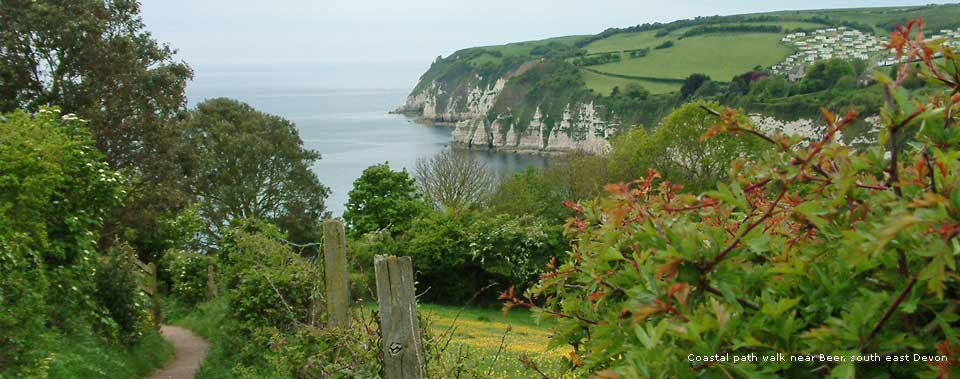 pet friendly holiday cottages in Devon England