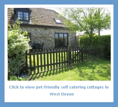 a collection of pet friendly self catering breaks west Devon