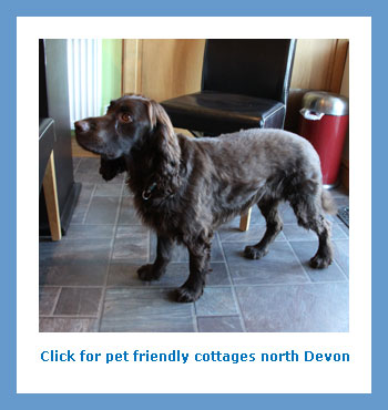 rent pet friendly rural cottages to rent in north Devon for a holiday or weekend break